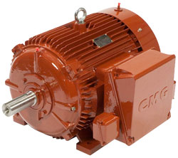 CMG PPA series High Efficiency Cast Iron AC Induction Motors