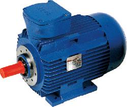 Index - Rotor ATEX motor
