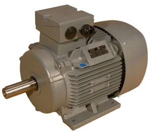 Regal Beloit (Marathon/Duchi) DM1 series ac induction motor