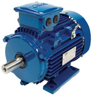 Regal Beloit (Marathon) MLA series ac induction motor