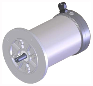 Marathon stainless steel IP66 motor with flange for the food industry
